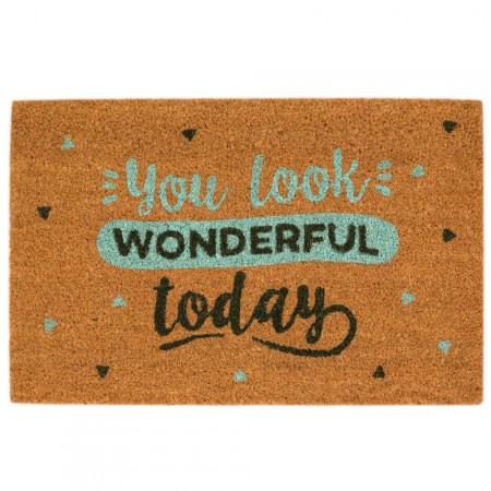 Felpudo You look wonderful today