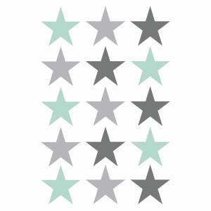 Grey and mint star vinyl